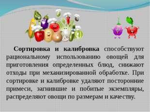 Сортировка и калибровка способствуют рациональному использованию овощей для п