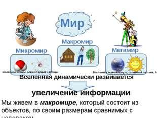 Мир Макромир Микромир Мегамир Вселенная динамически развивается увеличение и
