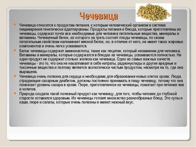 Чечевица Чечевица относится к продуктам питания, к которым человеческий орган...