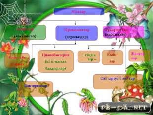 Ағзалар Анциттер (жасушасыз) Прокариоттар (ядросыздар) Эукариоттар (ядролылар
