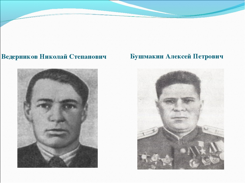 Ведерников Николай Степанович Бушмакин Алексей Петрович