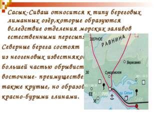 Сасык-Сиваш относится к типу береговых лиманных озёр,которые образуются вслед