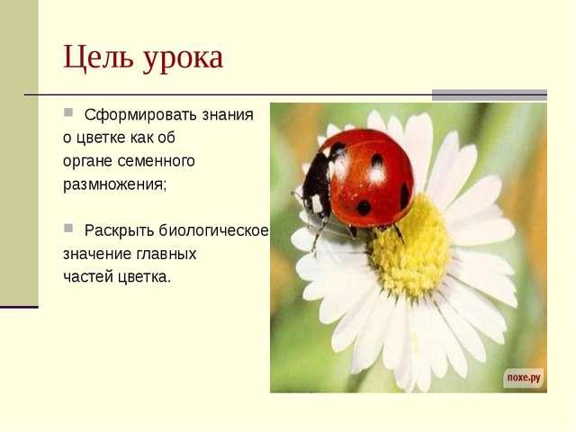 Цель урока Сформировать знания о цветке как об органе семенного размножения;...