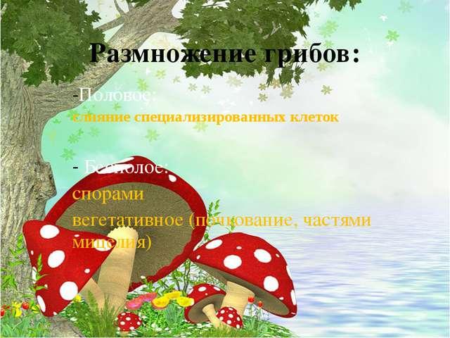 Размножение грибов: Половое: слияние специализированных клеток Бесполое: спор...