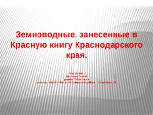 Земноводные, занесенные в Красную книгу Краснодарского края. подготовил: Мас