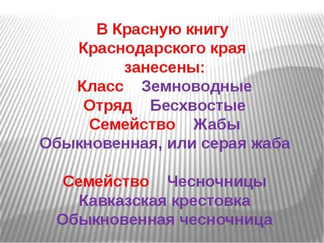 В Красную книгу Краснодарского края занесены: Класс Земноводные Отряд Бесхвос...