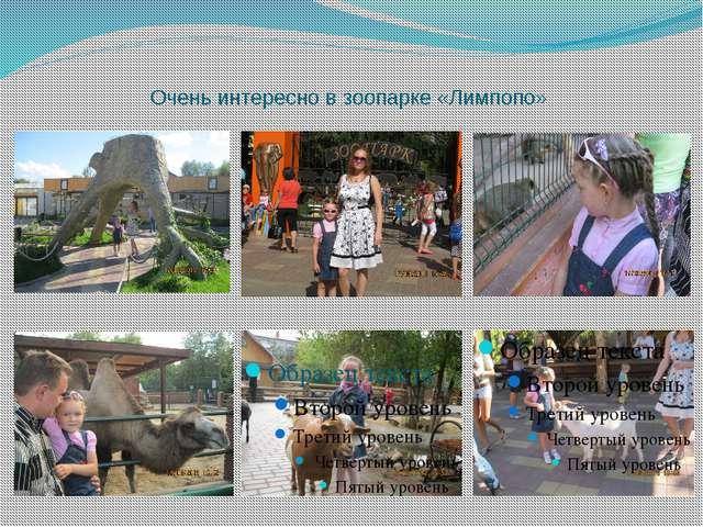 Очень интересно в зоопарке «Лимпопо»
