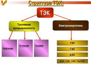 Структура ТЭК: ТЭК Топливная промышленность Электроэнергетика Нефтяная Угольн