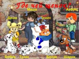 Даша, Маша, Денис и Антон купили себе щенков. Пошли гулять и перепутали их Г