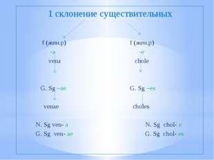 1 склонение существительных f (жен.р) f (жен.р) -a -e vena chole G. Sg –ae G.