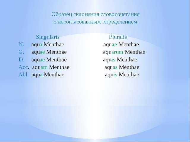 Образец склонения словосочетания с несогласованным определением. Singularis P...