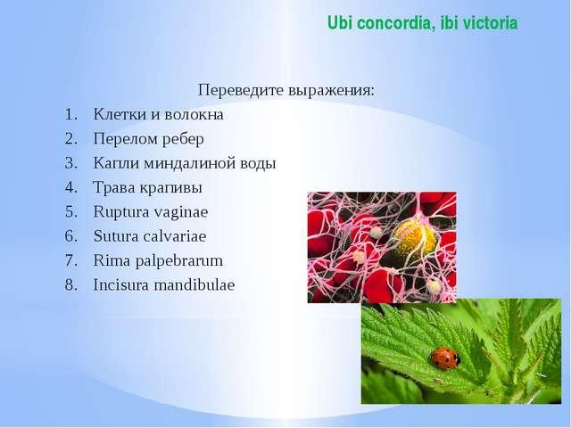 Ubi concordia, ibi victoria Переведите выражения: Клетки и волокна Перелом ре...