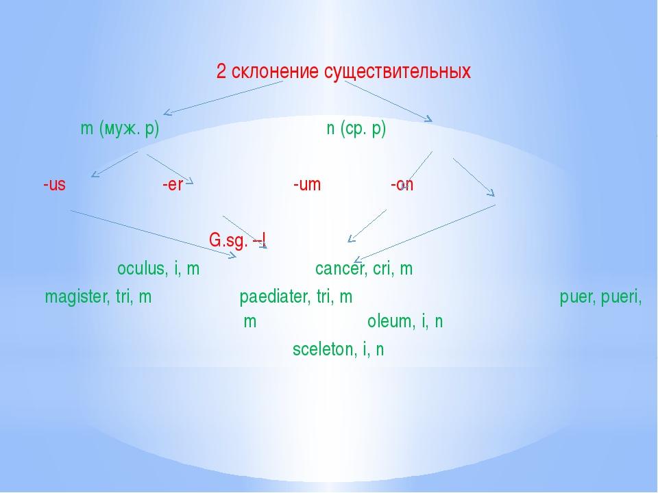 2 склонение существительных m (муж. р) n (ср. р) -us -er -um -on G.sg. –I ocu...