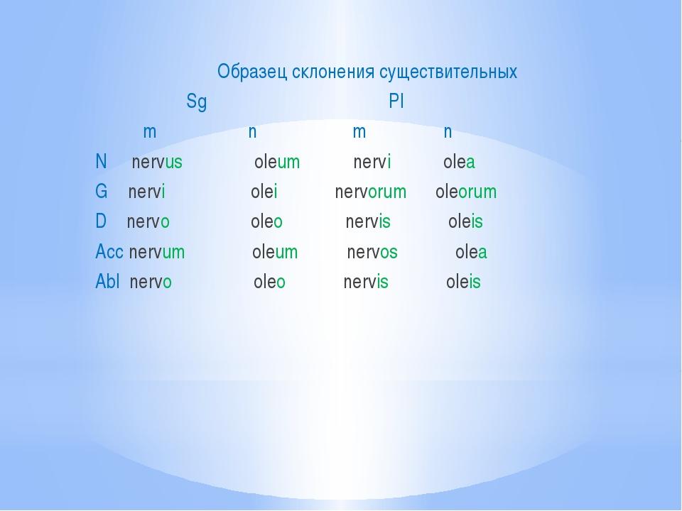 Образец склонения существительных Sg Pl m n m n N nervus oleum nervi olea G...