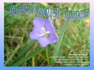 Авторы проекта: учителя русского языка и литературы Любовь Владимировна Латфу