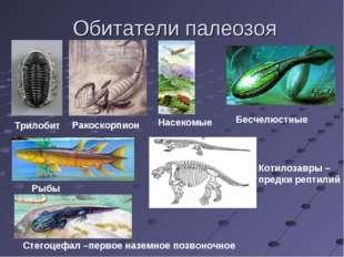 Обитатели палеозоя Трилобит Ракоскорпион Бесчелюстные Рыбы Стегоцефал –первое