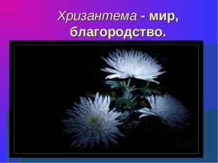 Хризантема - мир, благородство.