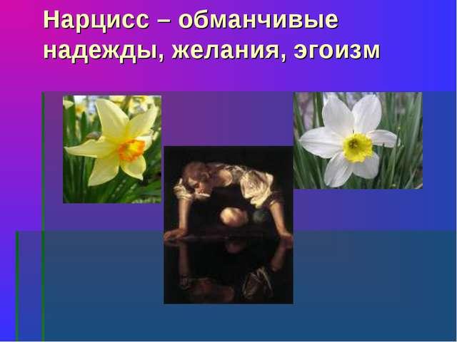 Нарцисс – обманчивые надежды, желания, эгоизм