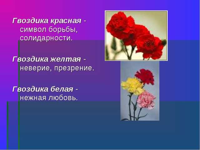Гвоздика красная - символ борьбы, солидарности. Гвоздика желтая - неверие, пр...