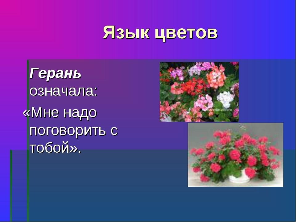 Язык цветов Герань означала: «Мне надо поговорить с тобой».