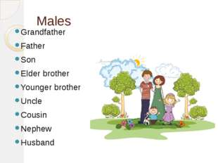 Males Grandfather Father Son Elder brother Younger brother Uncle Cousin Nephe
