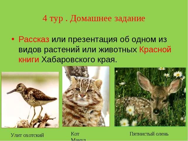 4 тур . Домашнее задание Рассказ или презентация об одном из видов растений и...