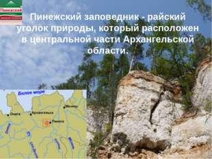 Пинежский заповедник - райский уголок природы, который расположен в центральн