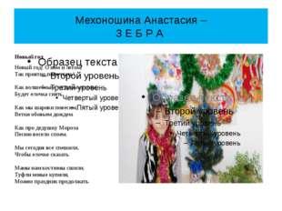 Мехоношина Анастасия – З Е Б Р А