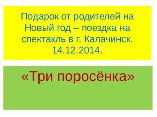 Подарок от родителей на Новый год – поездка на спектакль в г. Калачинск. 14.1