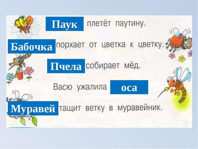 Паук Бабочка Пчела оса Муравей