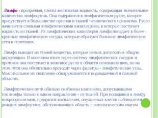 Григорьева Галина Михайловна Лимфа - прозрачная, слегка желтоватая жидкость,