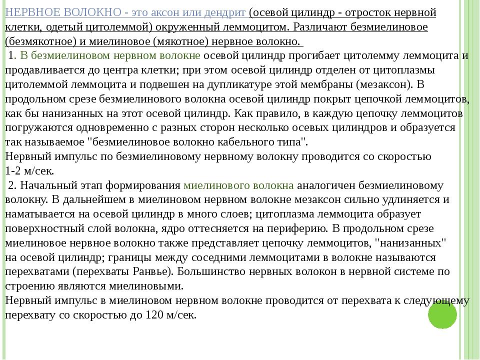 Григорьева Галина Михайловна НЕРВНОЕ ВОЛОКНО - это аксон или дендрит (осевой...