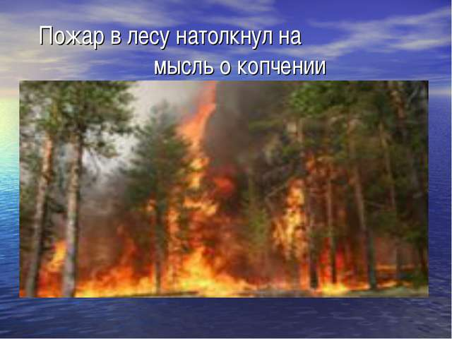 Пожар в лесу натолкнул на мысль о копчении