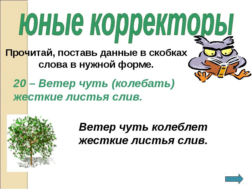 20 – Ветер чуть (колебать) жесткие листья слив. Прочитай, поставь данные в ск...