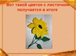 Вот такой цветок с листочком получается в итоге