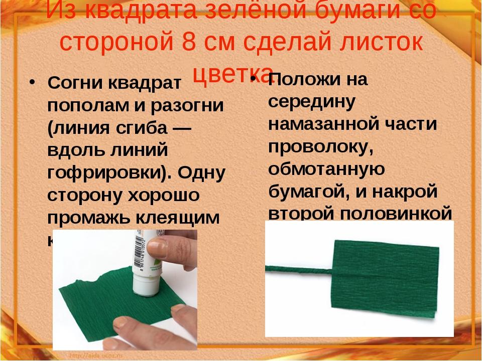 Из квадрата зелёной бумаги со стороной 8 см сделай листок цветка. Согни квадр...