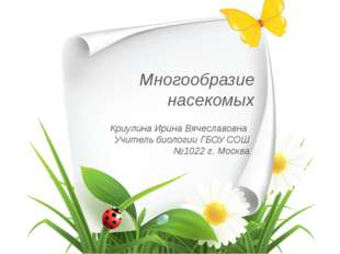 Многообразие насекомых Криулина Ирина Вячеславовна Учитель биологии ГБОУ СОШ