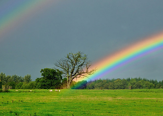 97595-rainbows-rainbow.jpg