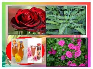 9.Какие цветы росли в саду у Кая и Герды? 10.Какой цветок говорит о своём до