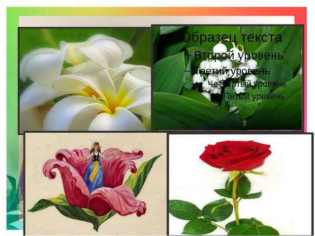 5.Какие цветы дарят чаще всего женщинам на 8 Марта? 8.Какой цветок является...