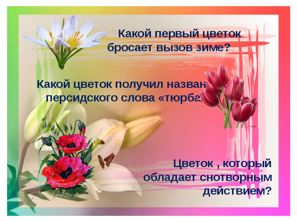 Какой первый цветок бросает вызов зиме? Какой цветок получил название от пер...