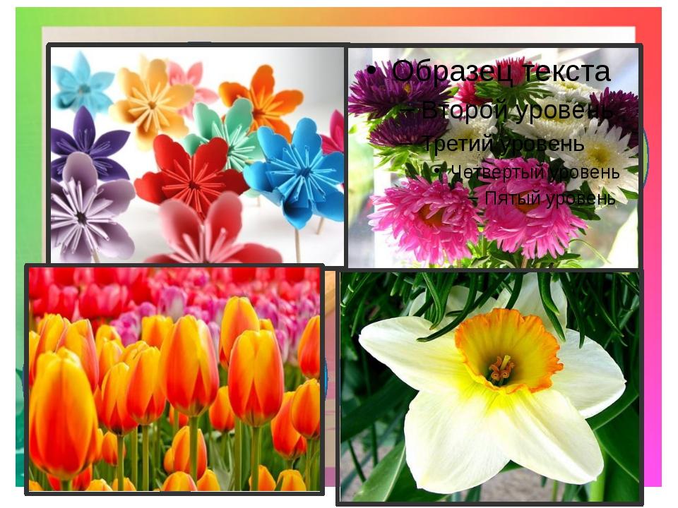 1.Какие цветы боятся дождя? 4.Как называется цветок, который носит имя самов...