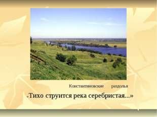 Константиновские раздолья «Тихо струится река серебристая...»