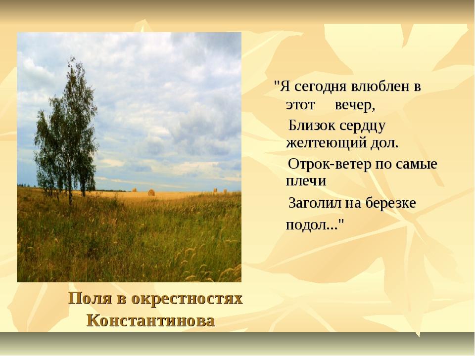 """Поля в окрестностях Константинова """"Я сегодня влюблен в этот вечер, Близок се..."""