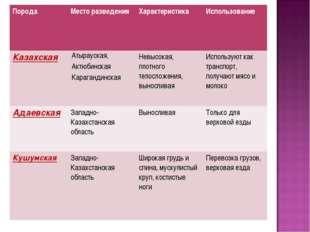 ПородаМесто разведенияХарактеристикаИспользование КазахскаяАтырауская, Ак