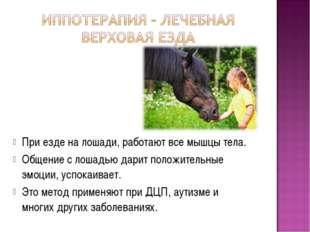 При езде на лошади, работают все мышцы тела. Общение с лошадью дарит положите