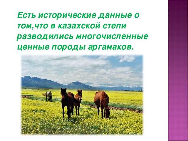 Есть исторические данные о том,что в казахской степи разводились многочислен...