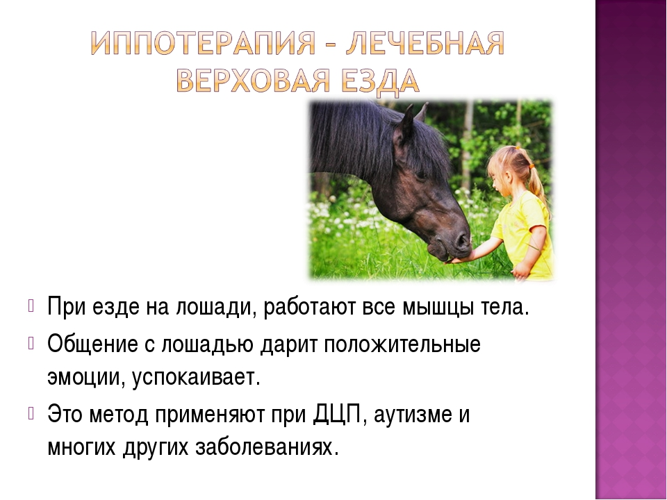 При езде на лошади, работают все мышцы тела. Общение с лошадью дарит положите...