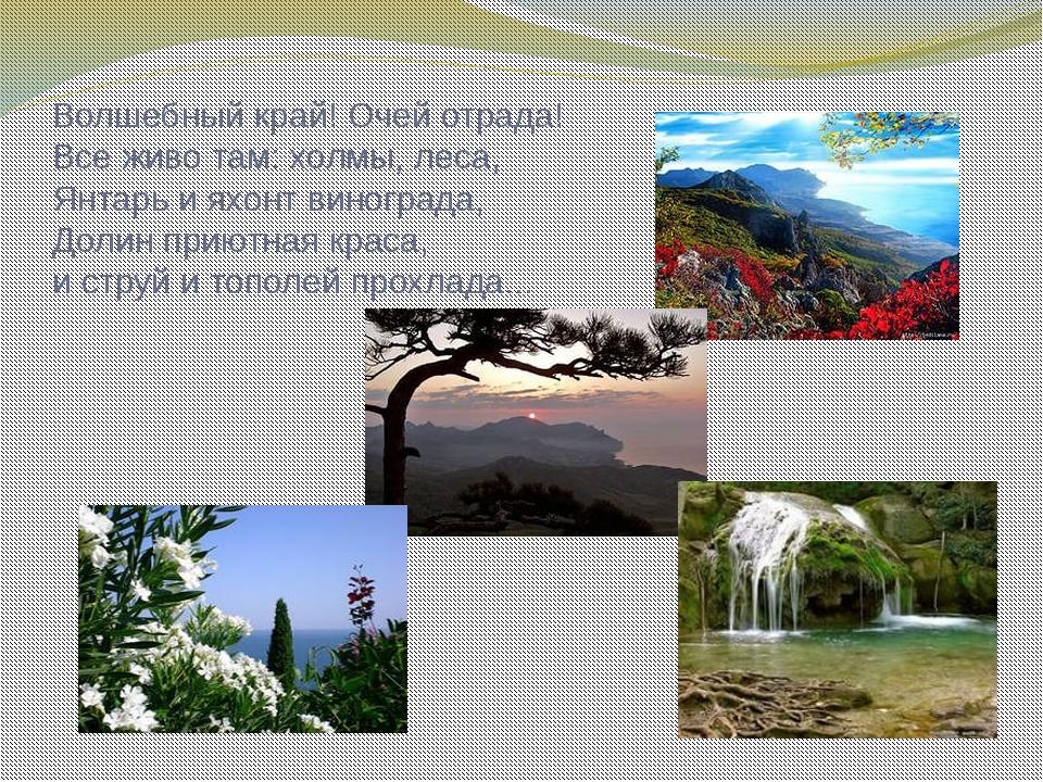 Волшебный край! Очей отрада! Все живо там: холмы, леса, Янтарь и яхонт виногр...