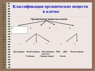 Классификация органических веществ в клетке